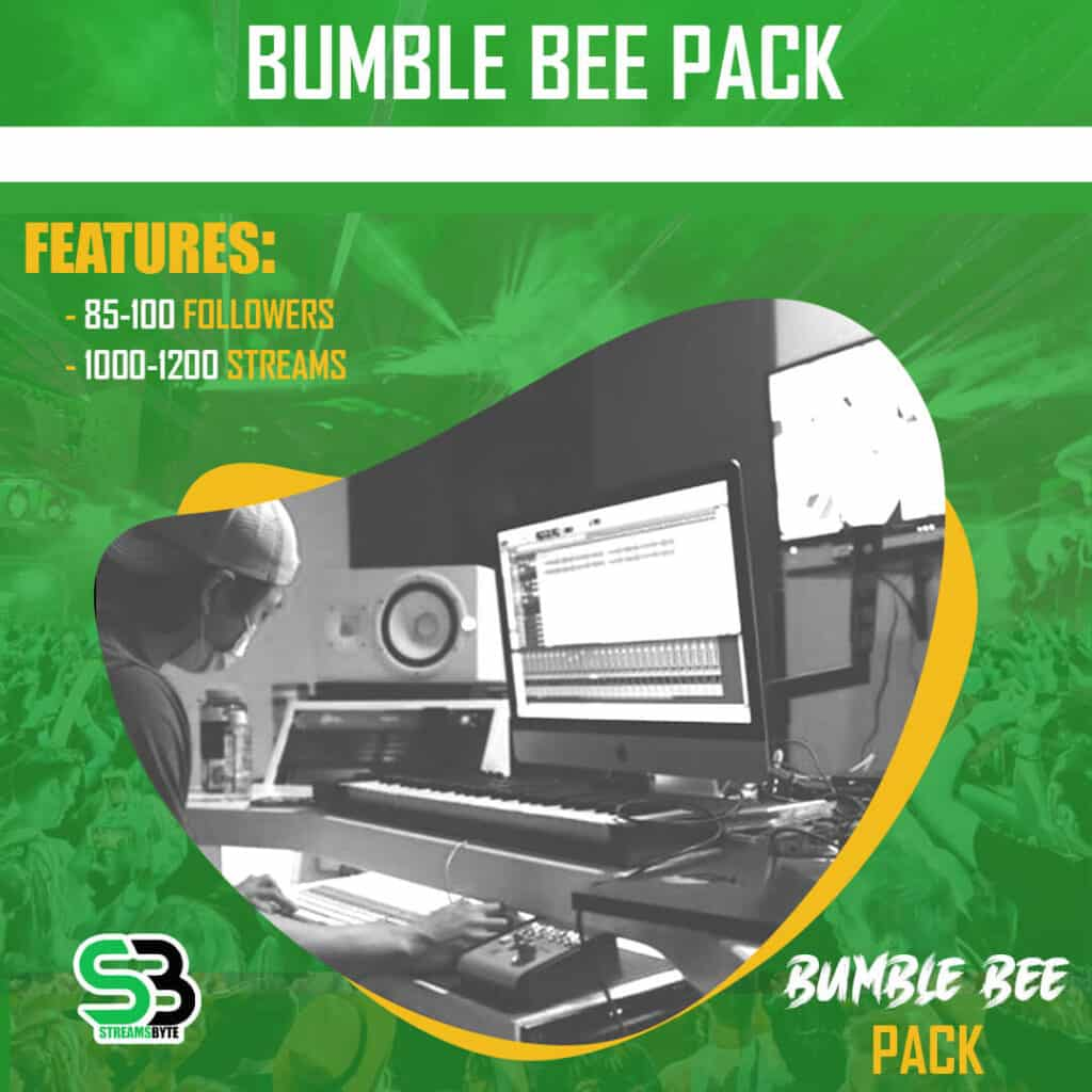 Bumble Bee - Spotify Bundle Promotion